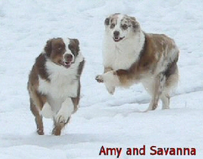 Savanna and Amy 1/6/06