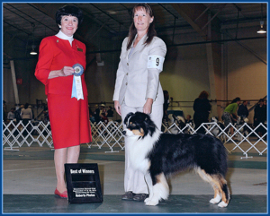 BOW - Wenatchee AKC 9/17/11